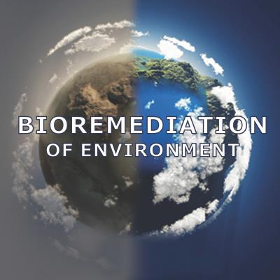Giving nature a boost: Bioremediation as a pollution solution